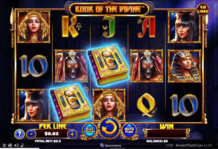 Playamo Bitcoin Casino